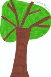 arbre-catherin.jpg