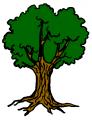 arbre3-3.png