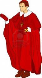 cardinal-isole-sur-fond.jpg