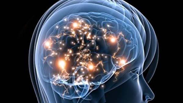 simuler-le-cerveau-humain.jpg